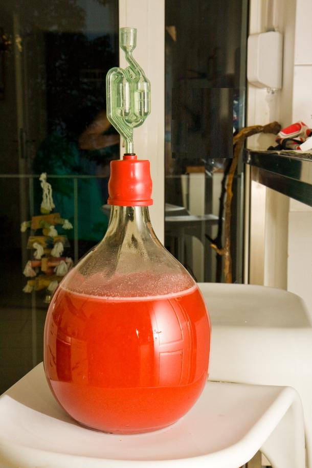 erdbeerwein maische gaerung ballon hefe roehrchen